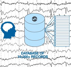EEG Database